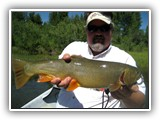 Nice Cutthroat Trout on The Snake River in Jackson Hole