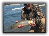Snake River Fine Spotted Cutthroat Trout