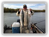 Great Striper Fishing on the Sacramento River